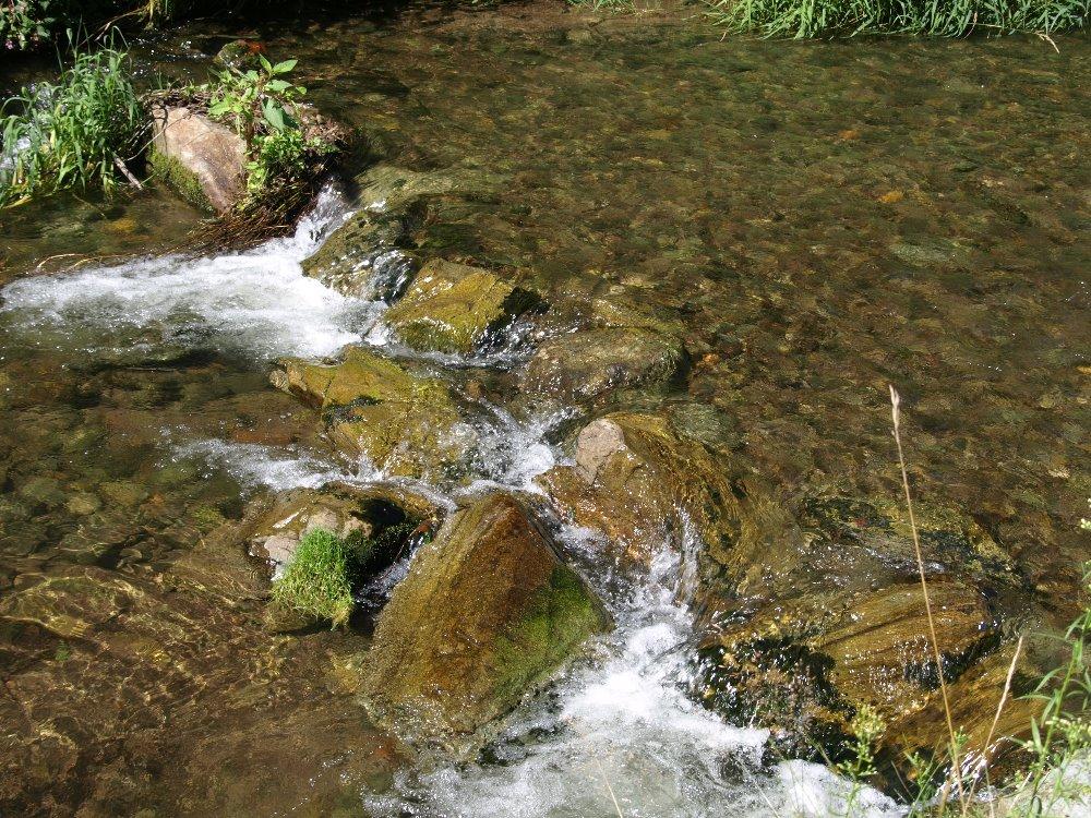 zlaty potok